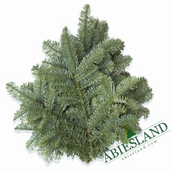 Noble Fir Greenery ca. 1 kg